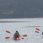 kayaks(1)